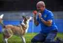 Attività-Gioco-Sport insieme al cane: il webinar gratuito con Marco Chiaro