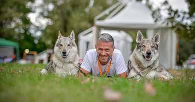Vi racconto la mia vita con due cani da lupo cecoslovacco
