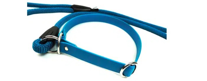 Dog Training Equipment di Doggy Essential