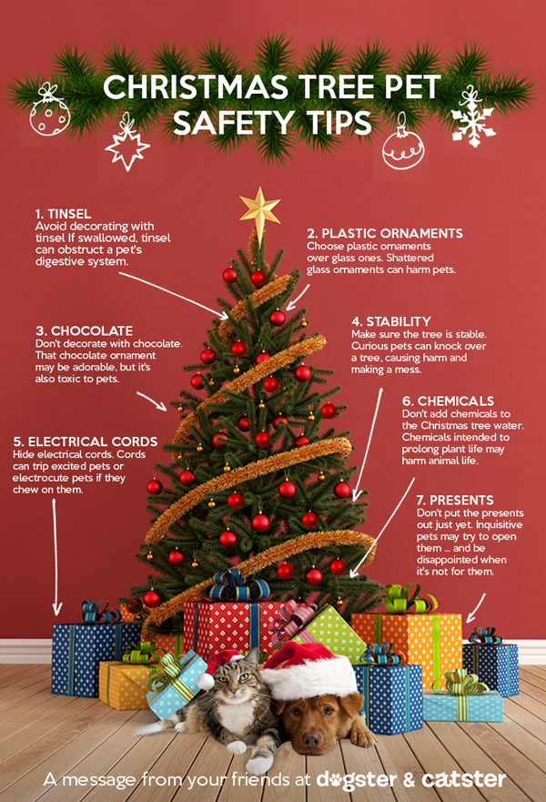 Tips To Keep Your Pets Safe Around The Christmas Tree (INFOGRAPHIC ...