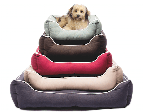Lounger Bed from Dog Gone Smart