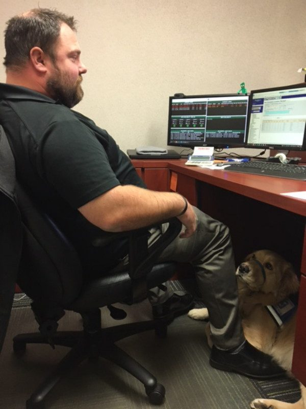 Jed is pretty comfortable in Carl's office. (Photo courtesy Waste Management)