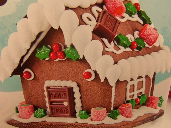 This is what the gingerbread project was SUPPOSED to look like. But no. We just can't have ANYTHING nice in this house, especially during the holidays.