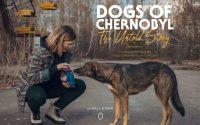 Documentaire les chiens de Tchernobyl.