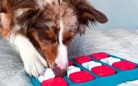 Jeu Puzzle pour chien Nina Ottosson.