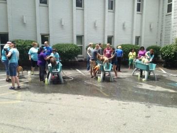 Dogtopia charity dog wash