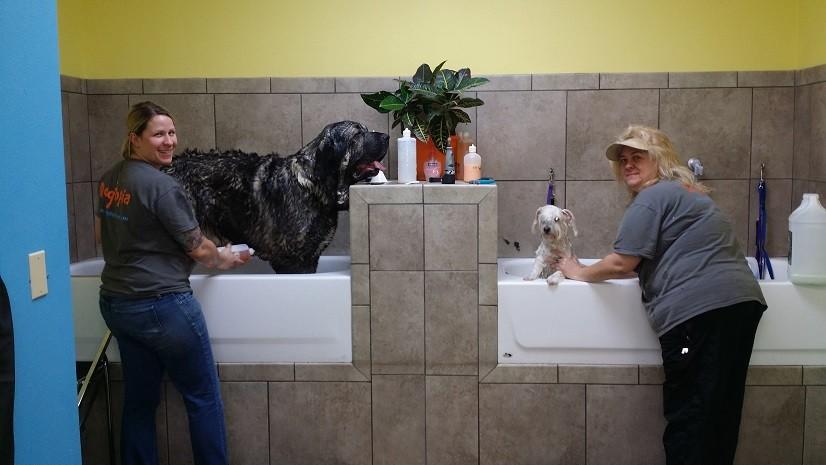 Big and Small bath