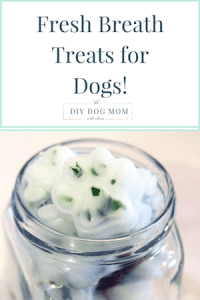 DIYDogMom Fresh Breath Dog Treats