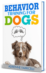 brain training for dogs behavior training