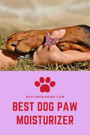 Best Dog Paw Moisturizers