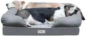 Best Orthopedic Dog Beds 2018
