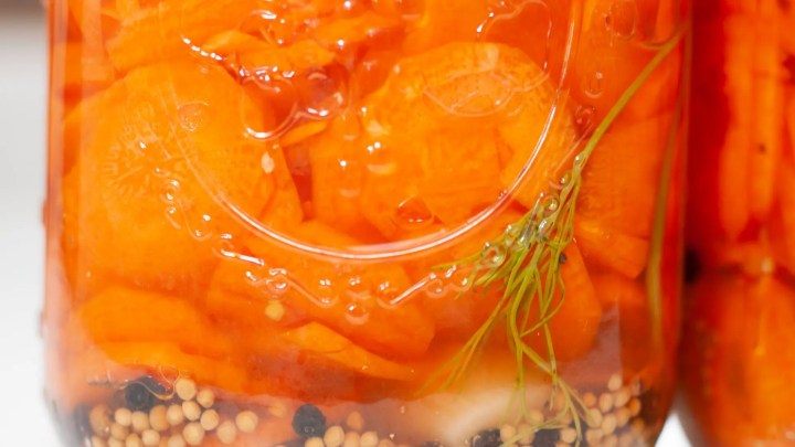 Healthy Probiotic Carrots