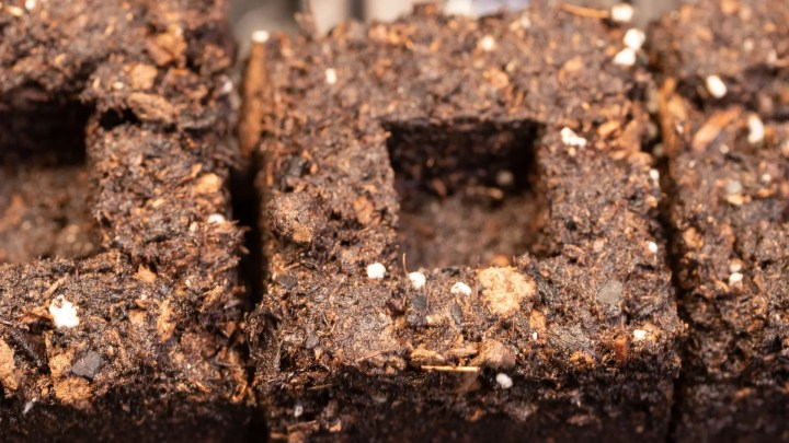 Soil blocking for plant health