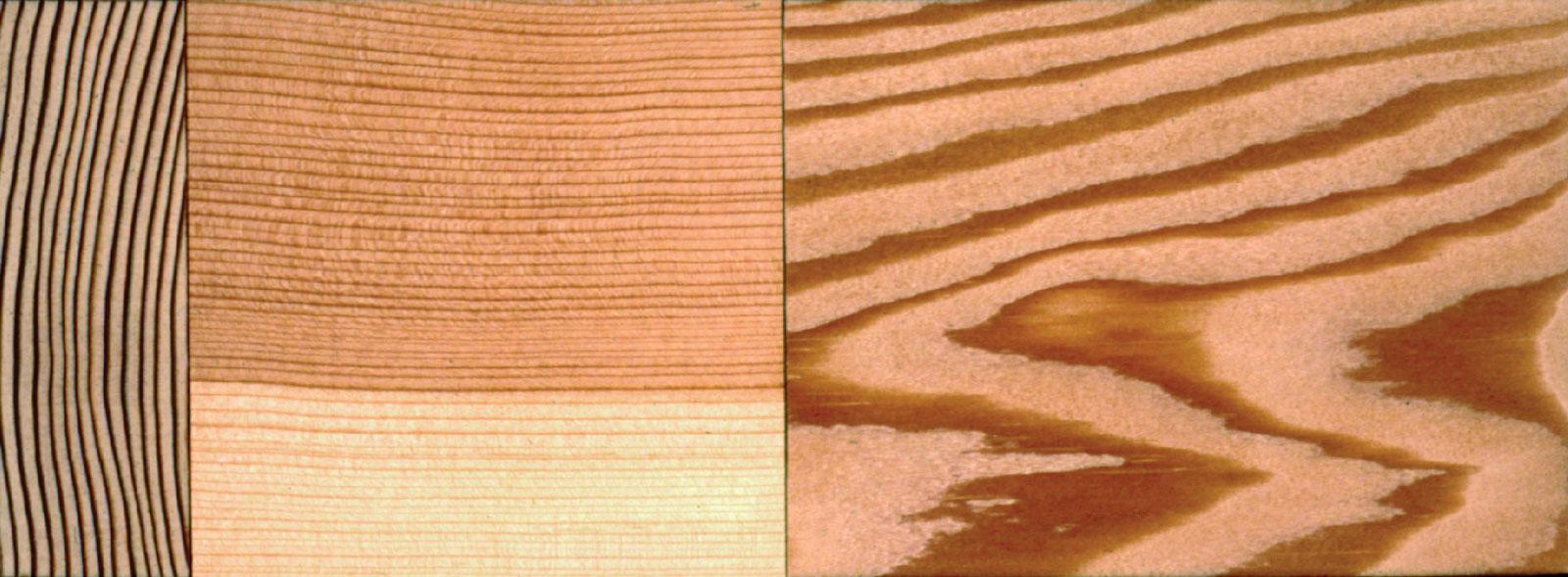 Fir Douglas It Grain How Cut Vertical