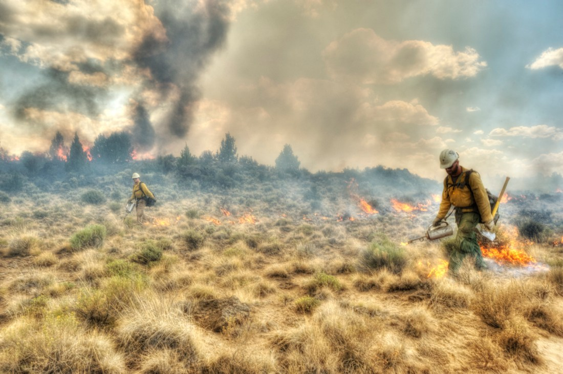 Firefighters walk through smoke and extinguish flames at the Lava Fire.