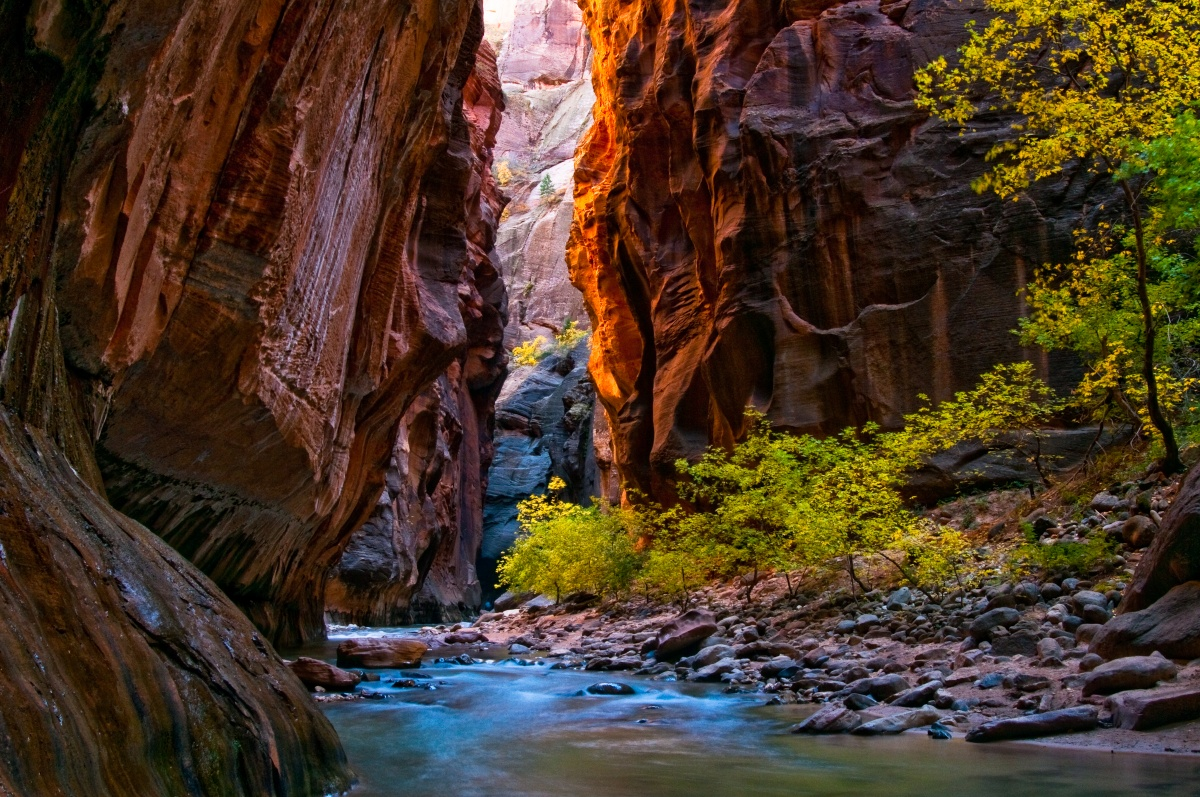 8 Things You Didn T Know About Zion National Park