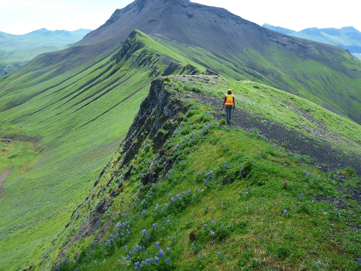 15 Amazing Jobs at the Interior Department   U S  Department of the     A woman in a safety vest walks along the jagged ridge of a dormant volcano