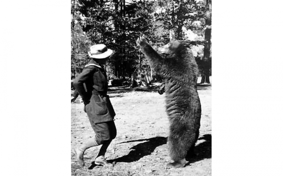 A woman, Enid Michael, dances with a bear standing upright on its hind legs. They are standing in front of pine trees in this black and white photo.