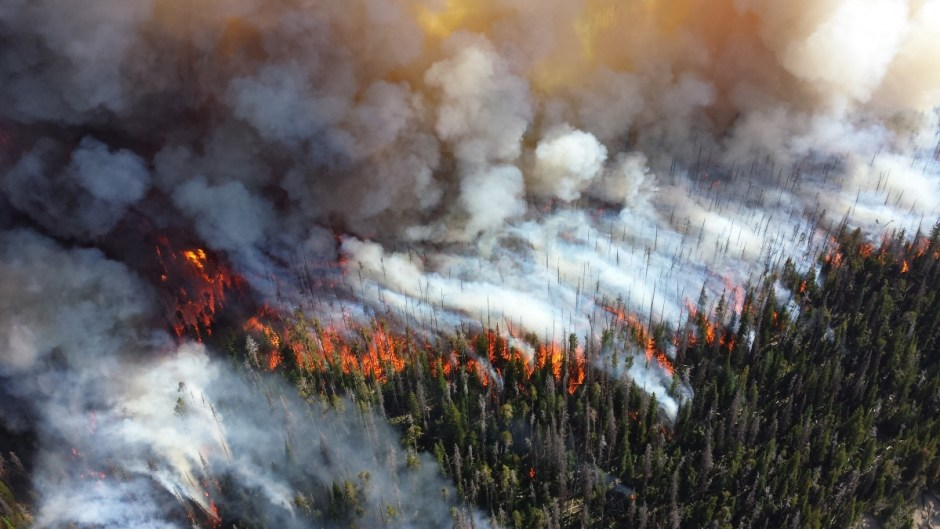 A wildfire burns in Yellowstone National Park