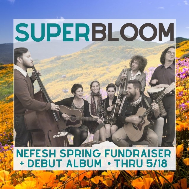 061 | Nefesh, Jewgrass, Superbloom and A Debut Album: Support This Amazing Jewish Community!