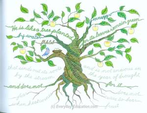 A tree of life coloring page from The Art of Cursive