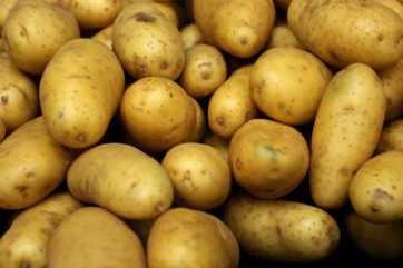 image_50001.potato