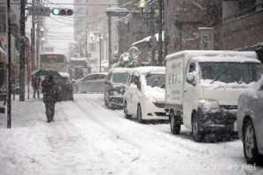 tokyo-first-snowfall-in-2013_42723