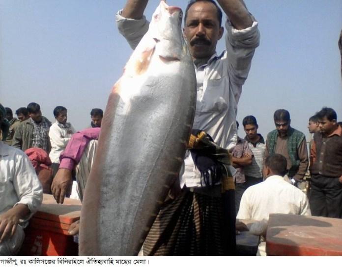Gazipur-(3)-_15_January_2015-Fish_Mela-2[1]