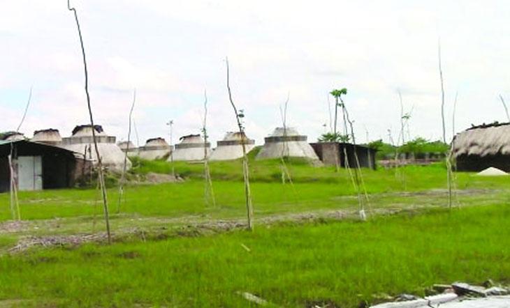 ঝিনাইদহে পাটখড়ি পুড়িয়ে তৈরি কার্বন রপ্তানি হচ্ছে বিদেশে