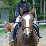Benefits Of Horseback Riding For Kids Do It All Working Mom