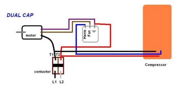 fan capacitor wiring car wiring diagram download tinyuniverse co Wiring Diagram For Ac Capacitor ac run capacitor wiring diagram ac motor capacitor wiring ac image fan capacitor wiring ac motor run capacitor wiring diagram wiring diagram single phase wiring diagram for ac capacitor
