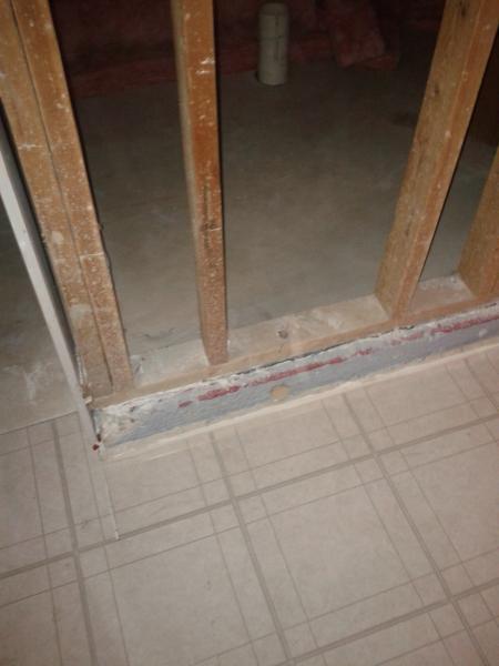 Cat Door Interior Wall