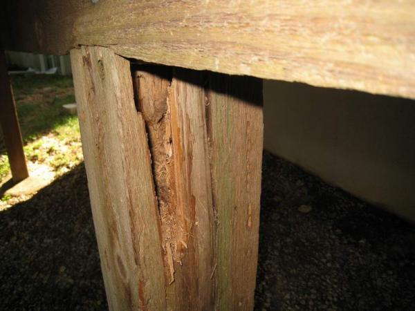 Deck Post And Beam Rot Doityourself Com Community Forums