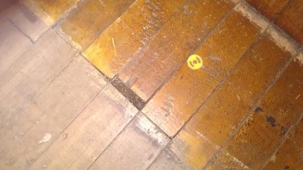 Wood Floor Restoring Doityourself Com Community Forums