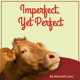 Imperfect, Yet Perfect