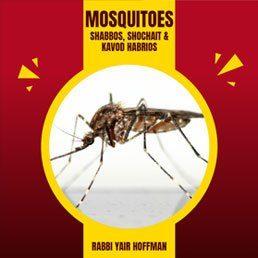 Mosquitoes: Shabbos, Shochait & Kavod HaBrios