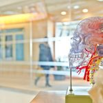 Beyin Damarlarının Tıkanması ve Felç