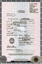 Unsere Referenzen Wir Besorgen Dokumente In Usa Sind Vor Ort