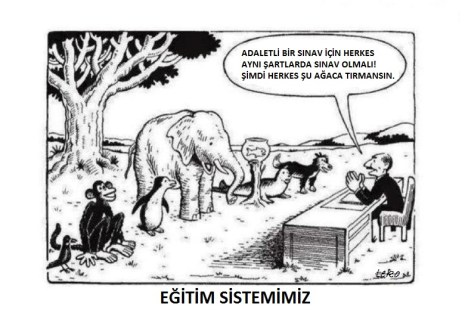 turk-egitim-sistemi_dokuzbescom