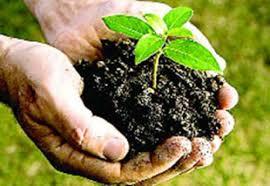 पर्यावरण पर कविता Hindi Poetry on Environment