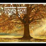 प्रकृति की सुन्दरता पर निबंध । Essay on nature in Hindi । प्रकृति निबंध