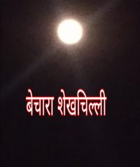 बेचारा शेखचिल्ली कहानी । Motivational Hindi story of shaikhchilli