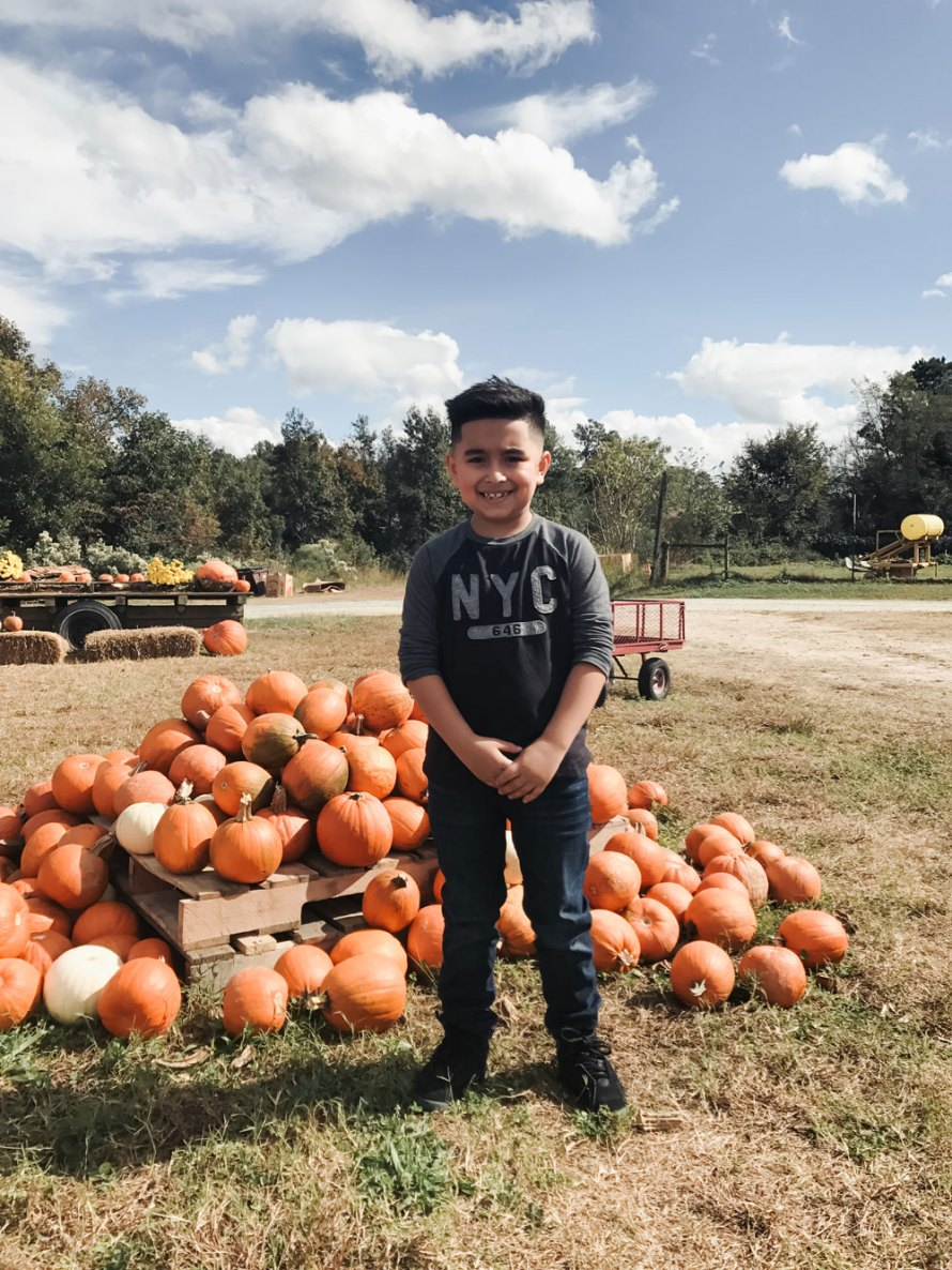 pumpkin patch pictures outfit casual style outfit idea