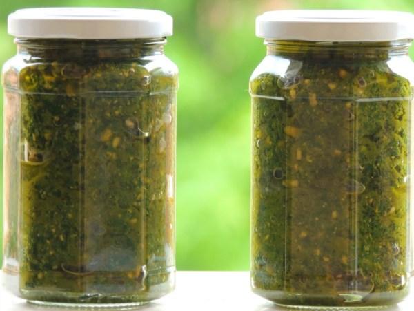 Pesto Vegan Basilico e Anacardi
