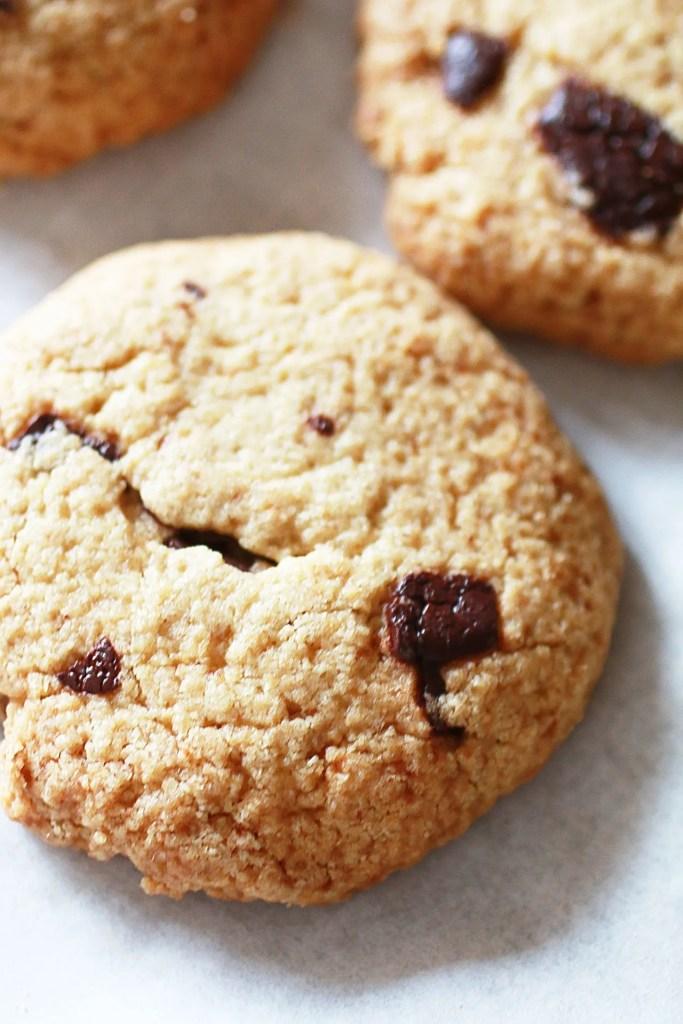 Biscotti con Gocce di Cioccolato e Farina di Avena di Ivy Moscucci