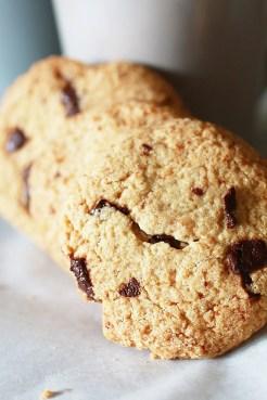 Biscotti con Gocce di Cioccolato e Farina di Avena9