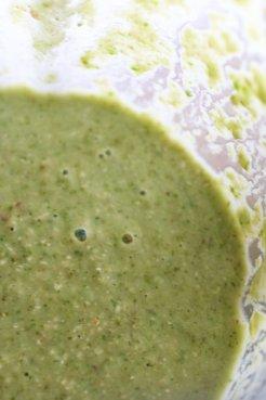 Frullato Verde con Mele e Avena Integrale (22)