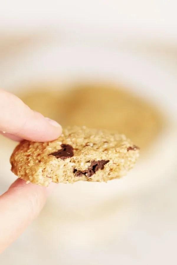Biscotti con Farina di Sorgo Senza Zucchero e Glutine