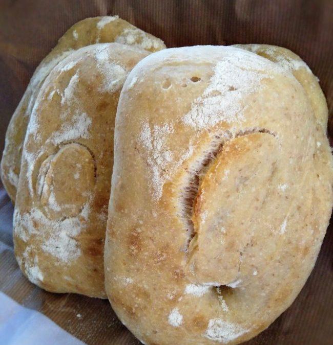 Ciabatte con farina integrale e lievito madre