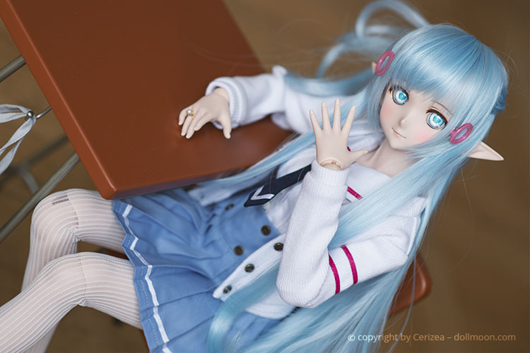 Find out more about the Dollfie Dream Hobby.